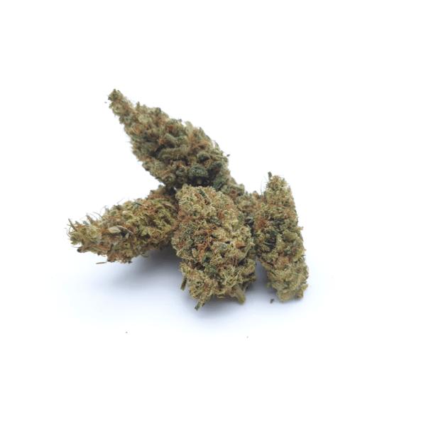 Dégustez le parfum classique et délicieux du cannabis avec cette variété locale d'herbe CBD cultivée uniquement par nos soins. La note de pin en arrière plan ne laisse pas indifférent non plus…